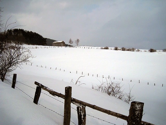 bivak_feb_2010